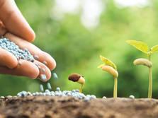 Fertilizer Industry graphic